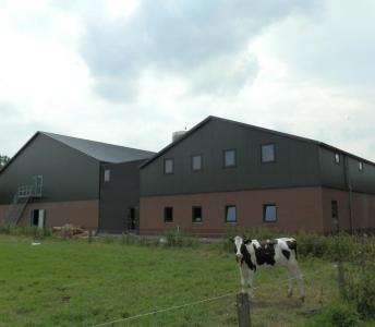Nieuwbouw pluimveestal Rhenen