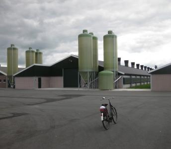 Nieuwbouw pluimveestallen Fluitenberg
